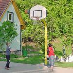 086Basketball